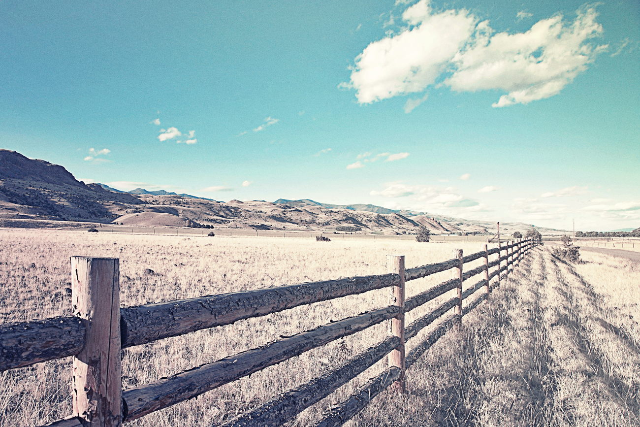 A fence for cows on the American farm. Author: kavaram