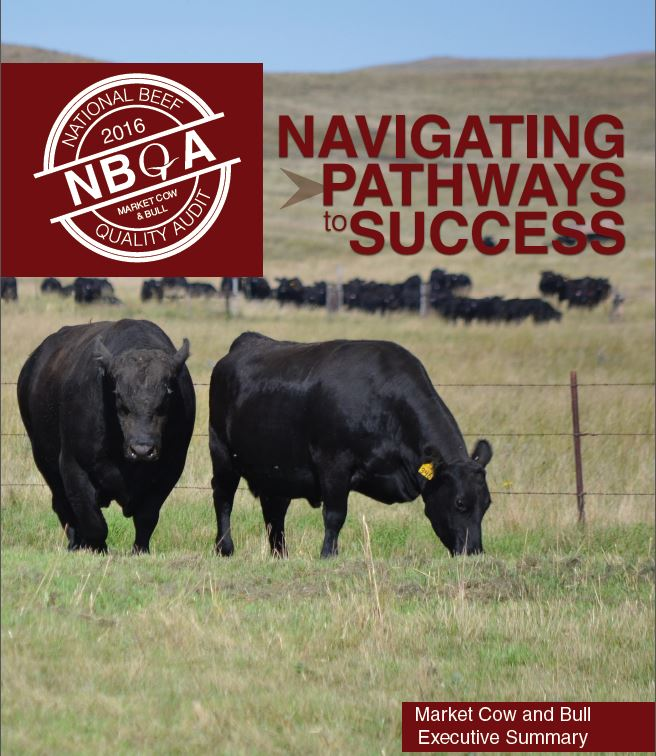 2016 National Beef Quality Audit Market Cow and Bull Results
